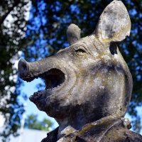12 Tipps zur Lernmotivation: Gegen den inneren Schweinehund